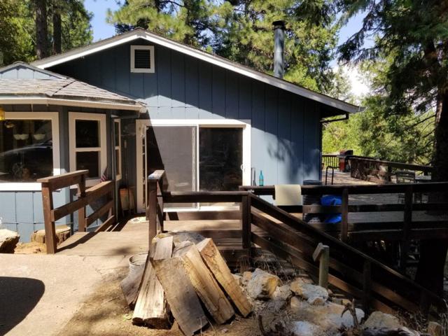 25588 Meadow Drive, Pioneer, CA 95666 (MLS #18050158) :: Heidi Phong Real Estate Team