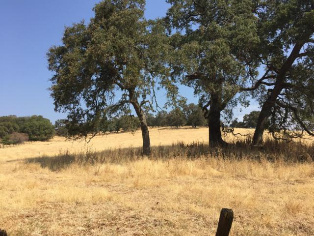 9005 Old Sacramento Road, Plymouth, CA 95669 (MLS #18050793) :: The Merlino Home Team