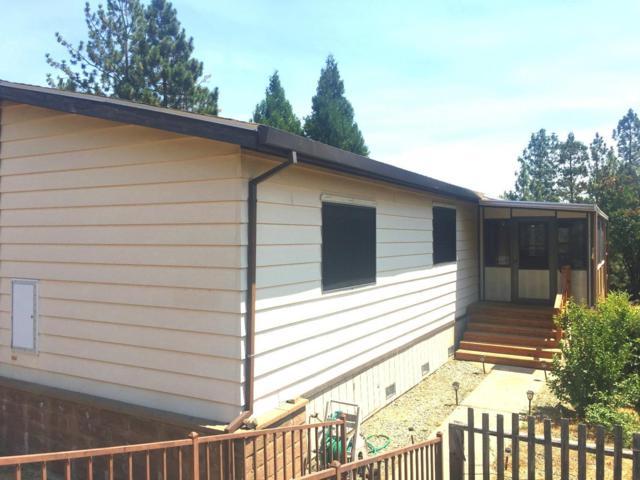 14074 Irishtown Road #61, Pine Grove, CA 95665 (MLS #18051152) :: REMAX Executive