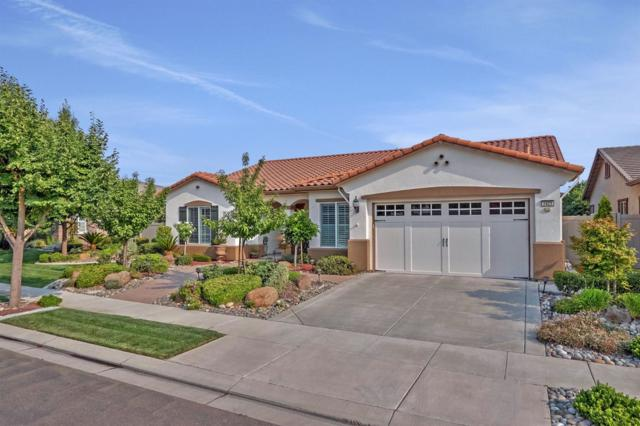 1429 Maple Valley Street, Manteca, CA 95336 (MLS #18051623) :: REMAX Executive