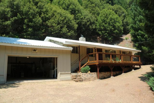 23433 Highway 49, Downieville, CA 95936 (MLS #18051628) :: Dominic Brandon and Team