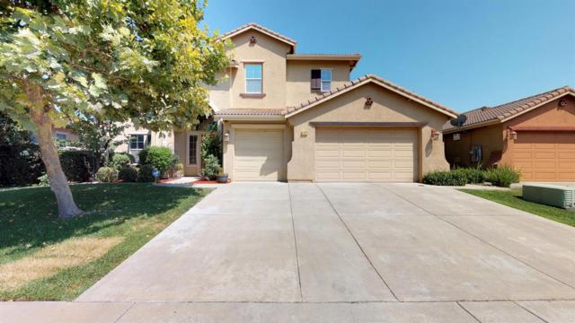 1532 Danbrook Drive, Sacramento, CA 95835 (MLS #18051764) :: Keller Williams Realty - The Cowan Team