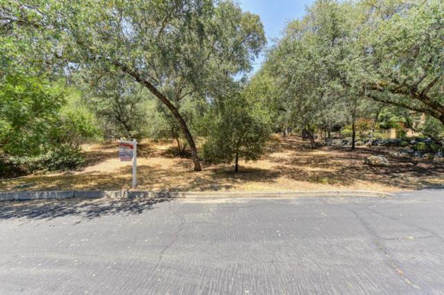 8739 Noland Lane, Fair Oaks, CA 95628 (MLS #18051884) :: Heidi Phong Real Estate Team