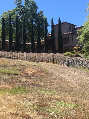 3390 Morel Way, Placerville, CA 95667 (MLS #18052052) :: Heidi Phong Real Estate Team