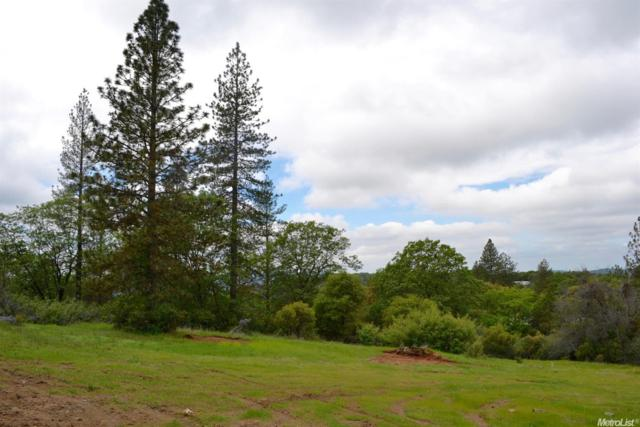 12028 Rex Reservoir Road, Rough And Ready, CA 95949 (MLS #18052703) :: Dominic Brandon and Team