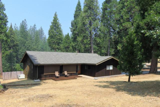 182 Robinville Drive, West Point, CA 95255 (MLS #18053049) :: Dominic Brandon and Team