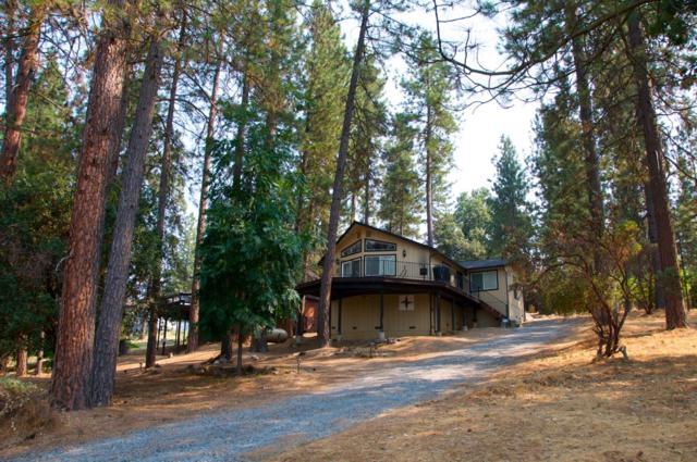 19369 Ferretti Road, Groveland, CA 95321 (MLS #18053075) :: Heidi Phong Real Estate Team