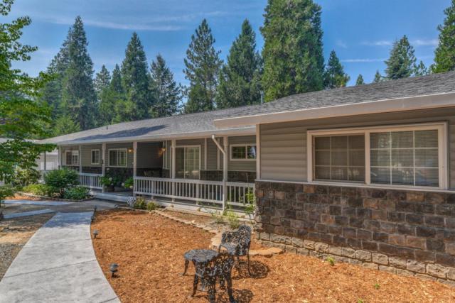 19125 E Pine Drive, Pioneer, CA 95666 (MLS #18053950) :: Heidi Phong Real Estate Team