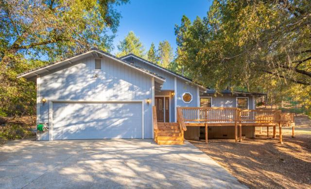 2940 Secret Lake Trail, Cool, CA 95614 (MLS #18054672) :: NewVision Realty Group