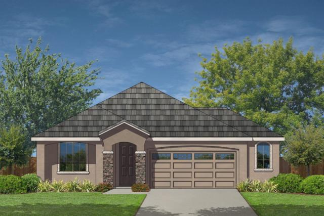 4025 Southampton Street, Roseville, CA 95747 (MLS #18055087) :: NewVision Realty Group