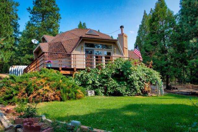 2895 Grizzly Road, Portola, CA 96122 (MLS #18055210) :: Keller Williams - Rachel Adams Group