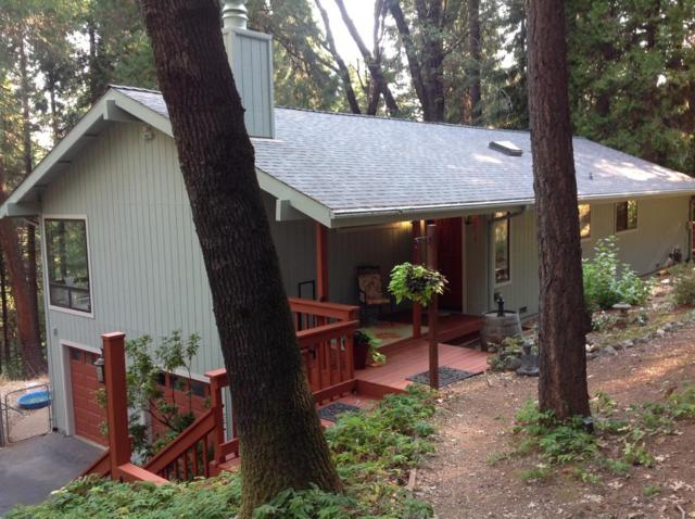 11884 Red Dog Road, Nevada City, CA 95959 (MLS #18055602) :: Dominic Brandon and Team
