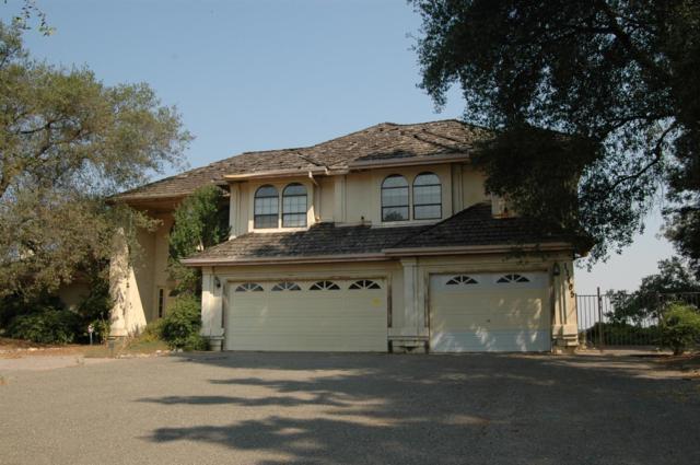 11405 Scarlet Oak Drive, Oakdale, CA 95361 (MLS #18055650) :: The Del Real Group