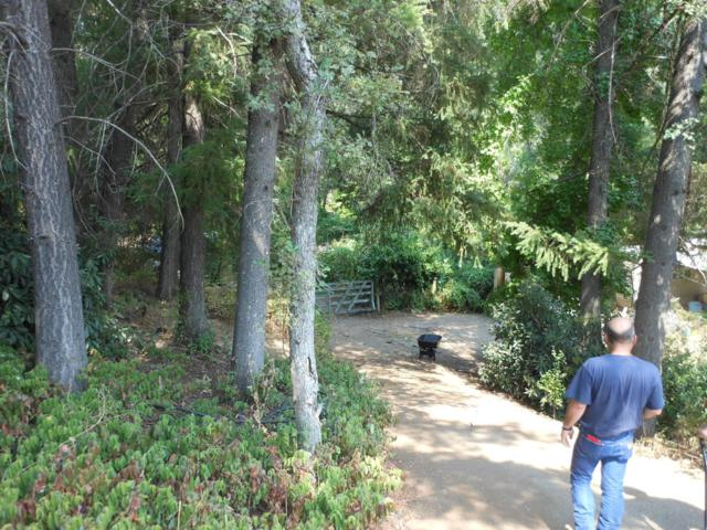 0 Hwy 49, Sonora, CA 95370 (MLS #18055664) :: Dominic Brandon and Team