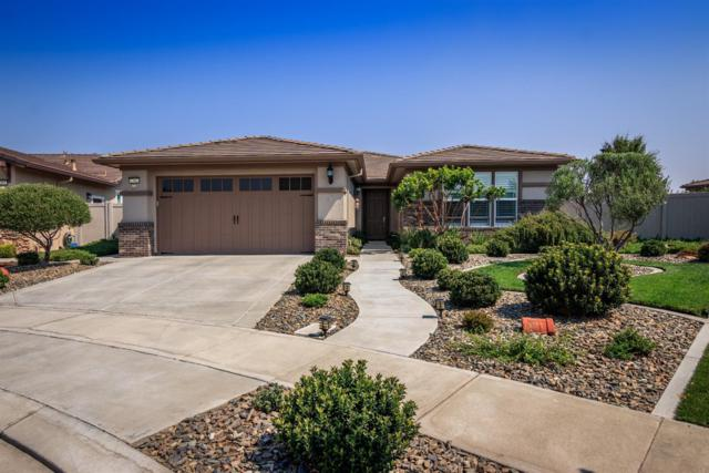 2392 Birdsong Place, Manteca, CA 95336 (MLS #18055843) :: Dominic Brandon and Team