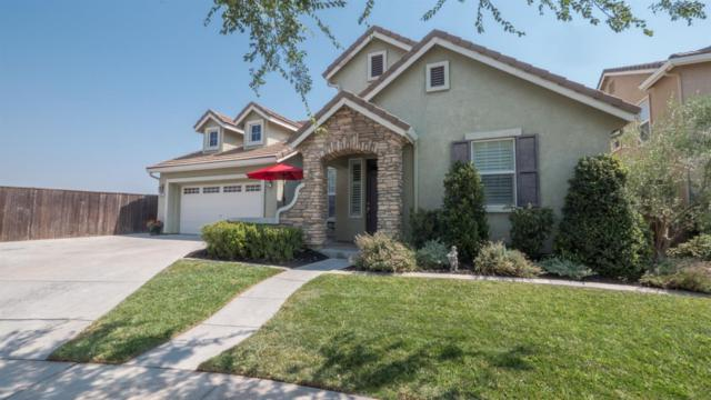 507 Gelding Court, Oakdale, CA 95361 (MLS #18055868) :: The Del Real Group