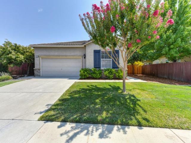 10065 Rhone Ranch Dr, Elk Grove, CA 95624 (MLS #18056340) :: Keller Williams Realty - The Cowan Team