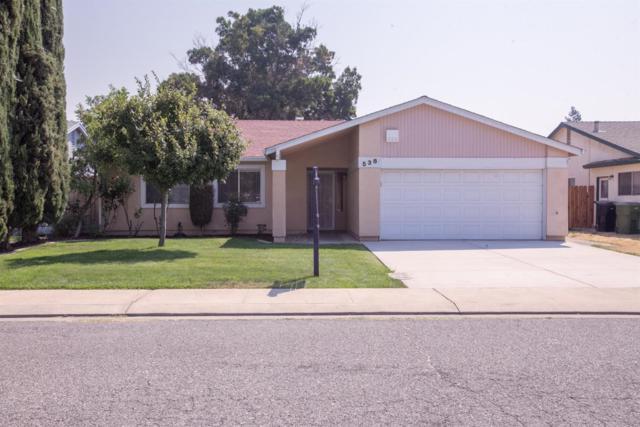 538 Dixie Lane, Ripon, CA 95366 (MLS #18056608) :: Dominic Brandon and Team