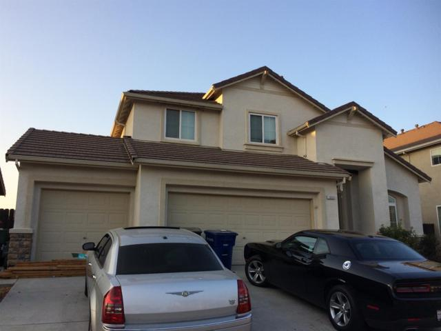 1353 Cougar Creek Drive, Patterson, CA 95363 (MLS #18056614) :: The Del Real Group