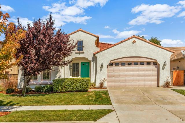 3340 Coyote Road, West Sacramento, CA 95691 (MLS #18057108) :: Gabriel Witkin Real Estate Group