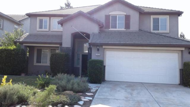 2039 Buena Vista Drive, Manteca, CA 95337 (MLS #18057140) :: The Del Real Group