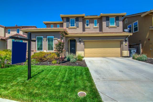 2107 Collet Court, Rocklin, CA 95765 (MLS #18057216) :: Dominic Brandon and Team
