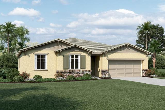447 Rotelli, Manteca, CA 95337 (MLS #18057301) :: The Del Real Group