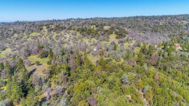 0 Cedar Pines, Fiddletown, CA 95629 (MLS #18057360) :: The Merlino Home Team