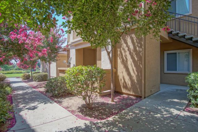 501 Gibson Drive #1414, Roseville, CA 95678 (MLS #18057410) :: The Del Real Group