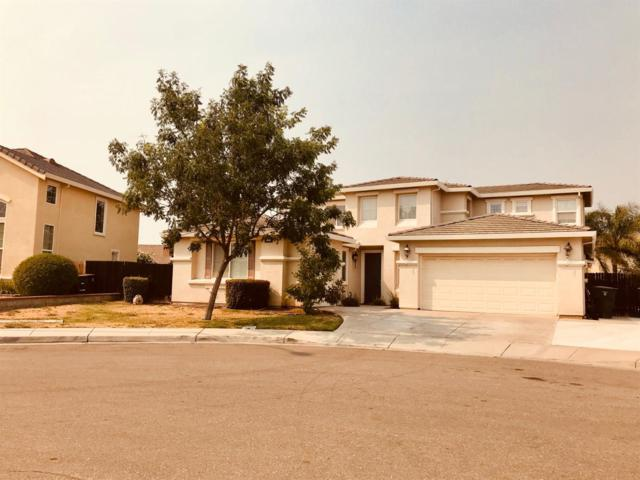 2267 Grand Teton Court, Tracy, CA 95377 (MLS #18057415) :: The Del Real Group