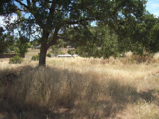1852 American River Trail, Cool, CA 95614 (MLS #18057984) :: NewVision Realty Group