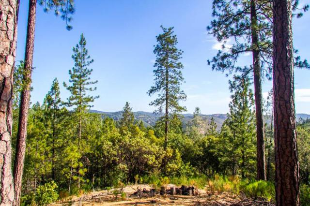 2467 Shirt Tail Trail, Cool, CA 95614 (MLS #18059168) :: Folsom Realty