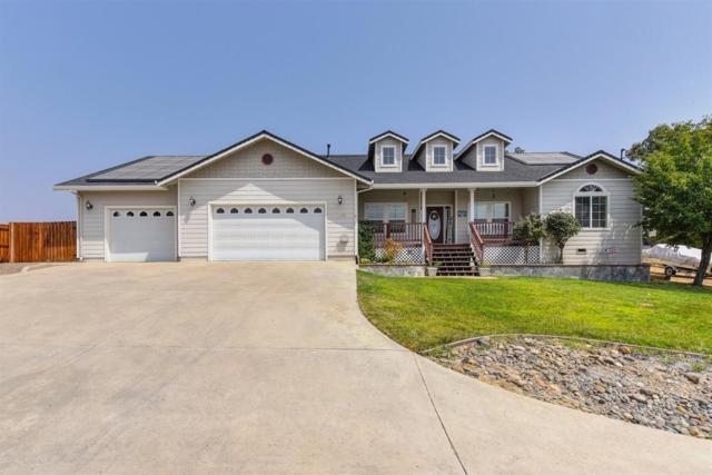 4532 Coyote Drive, Ione, CA 95640 (MLS #18059237) :: Keller Williams - Rachel Adams Group
