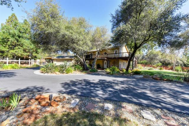 3545 Meder Road, Shingle Springs, CA 95682 (MLS #18059310) :: The Merlino Home Team
