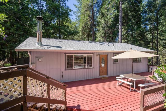 5677 Sierra Springs Drive, Pollock Pines, CA 95726 (MLS #18059583) :: Heidi Phong Real Estate Team