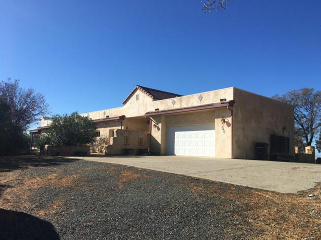 9883 Hernandez Drive, La Grange Unincorp, CA 95329 (MLS #18060031) :: Dominic Brandon and Team