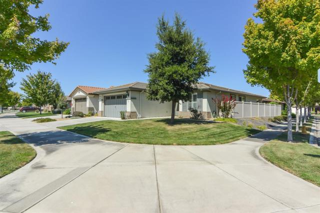 2358 SW Shadow Berry Drive, Manteca, CA 95336 (MLS #18060251) :: NewVision Realty Group