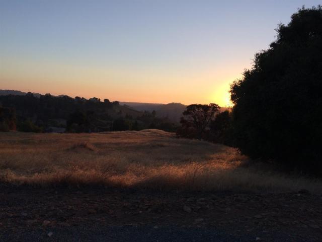 4461 Dagostini Drive, Somerset, CA 95684 (MLS #18060338) :: Heidi Phong Real Estate Team