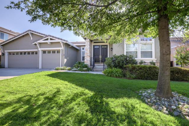2609 Mariella Drive, Rocklin, CA 95765 (MLS #18061079) :: REMAX Executive