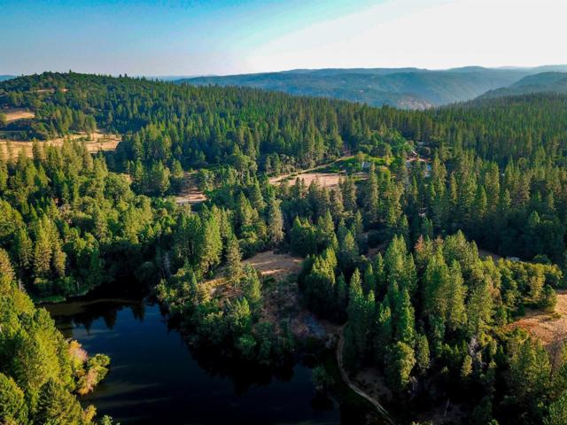 14965 Tyler Foote Xing Road, Nevada City, CA 95959 (MLS #18061731) :: REMAX Executive