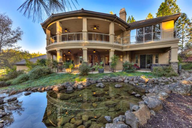 1520 Wood Duck Lane, Meadow Vista, CA 95722 (MLS #18061762) :: The Merlino Home Team