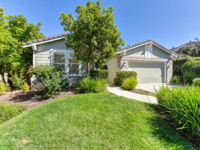 3101 Aaron Drive, Rocklin, CA 95765 (MLS #18063347) :: REMAX Executive