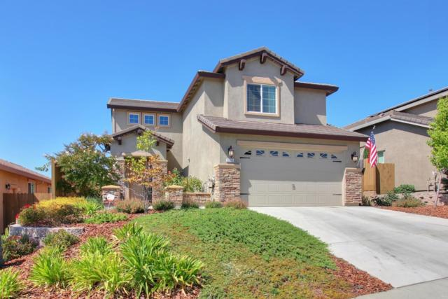 3796 Giggs Way, Roseville, CA 95661 (MLS #18063348) :: REMAX Executive