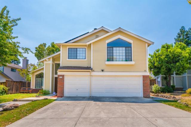 4568 Buckskin Drive, Antioch, CA 94531 (MLS #18063596) :: The Del Real Group