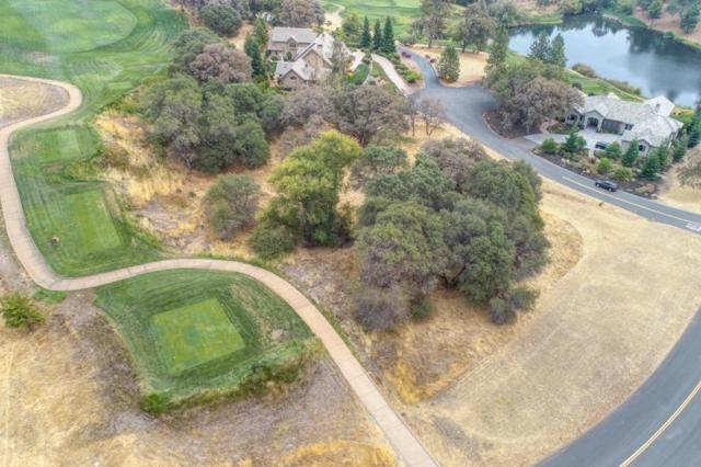 2405 Wild Lilac Ct, Meadow Vista, CA 95722 (MLS #18063647) :: NewVision Realty Group