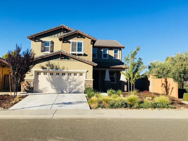 4100 Ocean Lane, Elk Grove, CA 95757 (MLS #18063839) :: Dominic Brandon and Team