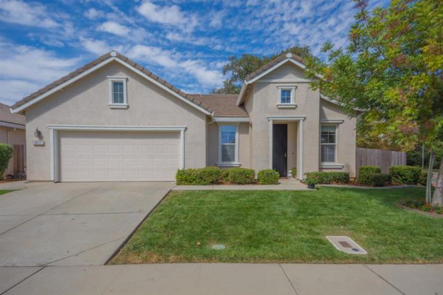5417 Fox Trotter Way, Elk Grove, CA 95757 (MLS #18064008) :: Dominic Brandon and Team