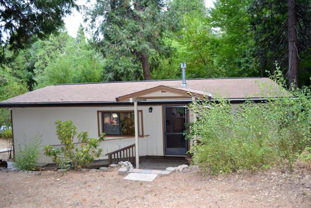 2420 Randolph Canyon Road, Pollock Pines, CA 95726 (MLS #18064526) :: REMAX Executive