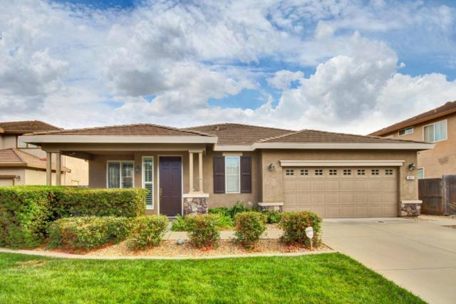 8971 Haflinger Way, Elk Grove, CA 95757 (MLS #18064642) :: Dominic Brandon and Team