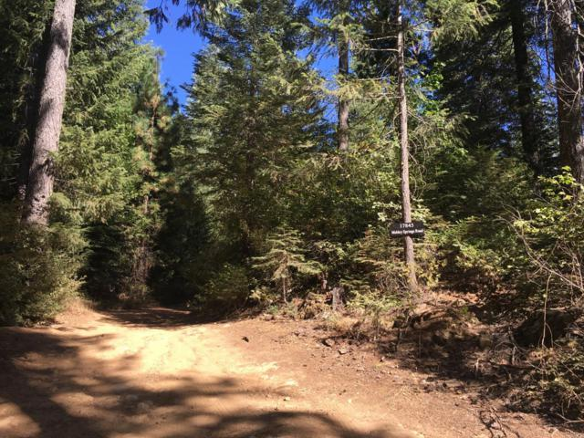 17845 Mobley Springs Road, Nevada City, CA 95959 (MLS #18064663) :: REMAX Executive